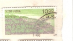 Stamps Asia - India -  flora