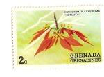 Sellos de America - Granada -  Flores de Grenada Grenadinas- Poinsetia