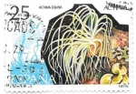 Stamps Spain -  actinia