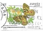 Sellos de Europa - España -  fauna española en peligro de extinción