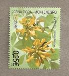 Stamps Europe - Montenegro -  Petteria ramentosa