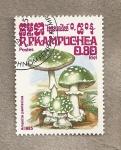 Stamps Cambodia -  Seta:Amanita panterina