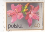 Stamps : Europe : Poland :  FLORES-