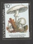 Sellos del Mundo : Europa : Bulgaria : Amanita  verna