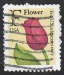 de America - Estados Unidos -  1928 - Flor tulipan
