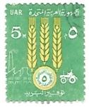 de Africa - Egipto -  agricultura