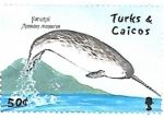 Stamps : America : Turks_and_Caicos_Islands :  fauna marina