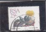 Sellos de Africa - Sudáfrica -   Cheiridopsis peculiaris