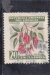 Stamps : America : Uruguay :  Ceibo-Flor nacional