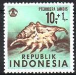 Stamps Indonesia -  CONCHAS  MARINAS,  PTEROCERA  LAMBIS.