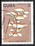 Sellos del Mundo : America : Cuba : Setas - Pleurotus floridanus