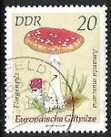 Stamps Germany -  Setas - Amanita muscaria