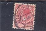 Sellos de Europa - Holanda -  Reina Wilhelmine