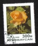 Sellos de Asia - Azerbaiyán -  Rosas