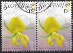 Stamps : Europe : Slovenia :  Genista Holopétala   2007 doble  1,34€