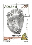 Stamps : Europe : Poland :  Animales de caza