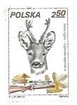 Sellos de Europa - Polonia -  Animales de caza