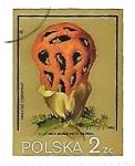 Sellos del Mundo : Europa : Polonia : Setas