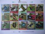 Stamps America - Colombia -  Risaralda-Colombia - BIRD FESTIVAL (2018) - Un Territorio Biodiverso