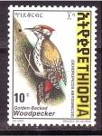 Stamps Ethiopia -  Pajaro carpintero