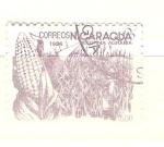 Sellos del Mundo : America : Nicaragua : maíz RESERVADO