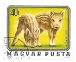 Stamps of the world : Hungary :  jabatos