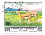 Stamps of the world : Mongolia :  antilopes