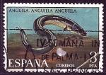 Stamps Spain -  fauna    anguila
