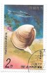 Stamps North Korea -  conchas