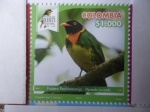 Sellos del Mundo : America : Colombia : Frutero Pechinaranja - Pipreola Jacunda - Risaralda Bird Festival 2018.