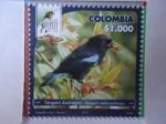 Sellos del Mundo : America : Colombia : Tángara Aurinegra - Bangsia Melanochlamys - Risaralda Bird Festival 2018.