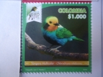 Sellos del Mundo : America : Colombia : Tángara Multicolor - Chlorochrysa Nitidissima - Risaralda Bird Festival 2018.