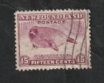 Sellos del Mundo : America : Canadá : Newfoundland-Terranova 181 - Cría de foca