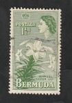 Sellos del Mundo : America : Bermudas : 135 - Flor lily
