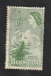 Stamps : America : Bermuda :  135 - Flor lily