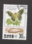 Stamps North Korea -  Attacus ricini