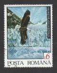 Sellos de Europa - Rumania -  Haliaewtus leucocephalus