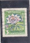 Sellos del Mundo : America : Uruguay : flores- pasionaria