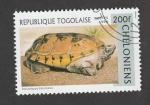 Stamps : Africa : Togo :  Tortuga Staurotypus triporcatus