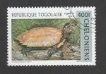 Stamps : Africa : Togo :  Geoemyda spengleri