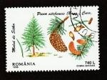 Stamps : Europe : Romania :  Abeto