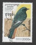 Stamps : Asia : Cambodia :  Ave Phoenicurus phoenicurus