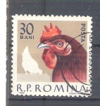 Sellos de Europa - Rumania -  gallina RESERVADO
