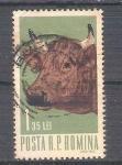 Sellos de Europa - Rumania -  vaca