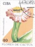 Stamps : America : Cuba :  flores de captus