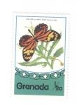de America - Granada -  Mariposas. Lycorea ceres