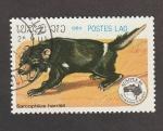 de Asia - Líbano -  Sarcophilus hsrris