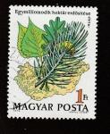 de Europa - Hungría -  Rama de pino
