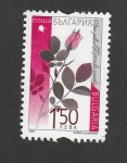 Stamps Bulgaria -  Rosa gallica