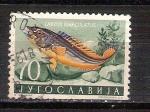 Sellos del Mundo : Europa : Bulgaria : pez RESERVADO